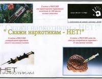 Селиванова Надежда, 15 лет, ТОГОУ Кирсановская общеобразовательная школа-интернат СПОО