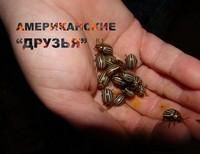 Бекреев Дима, 16 лет, Новосибирская область, Здвинский район, с. Здвинск