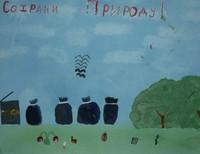 Квиткаускас Евгений,11 лет,МОУ СОШ п. Замковская ул. Школьная. 8