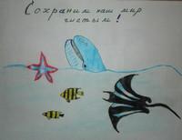 Кургузиков Виталий 10 лет Г.Липецк, ГОУ ДОД, Детский эколого-биологический центр