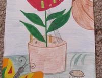 Гриша Ира, 6 класс, Ростов-на-Дону